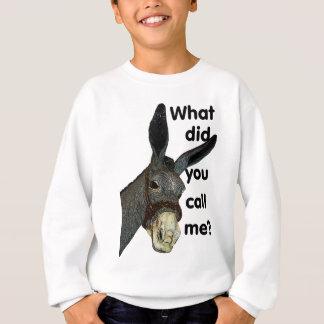 What did you call me? sweatshirt