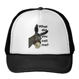 What did you call me? trucker hat