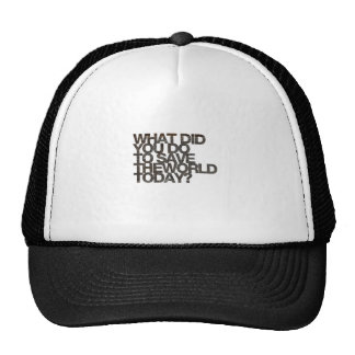 What did you do to save the world today? mesh hats
