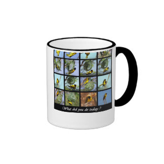 What did you do today - bird and nests ringer coffee mug