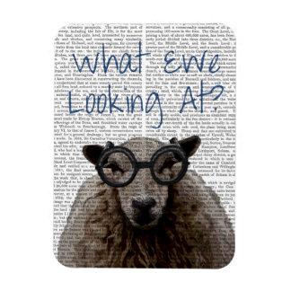 What Ewe Looking At Magnet