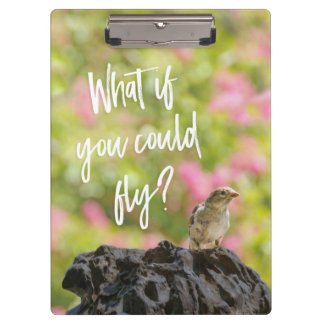 What if you could fly? Bird Fountain Clipboard