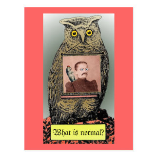 """""""What is  normal?"""" Postcard"""