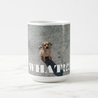 """What !?!"" Mug"