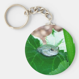 What s Up Tree Frog Key Chain