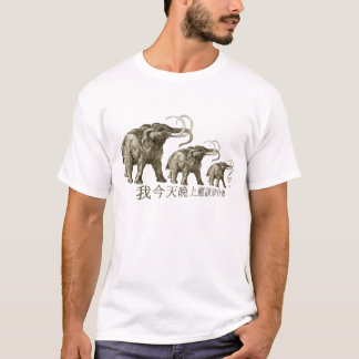 What should I wear tonight? T-Shirt