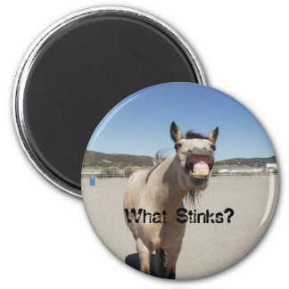What Stinks? Magnet