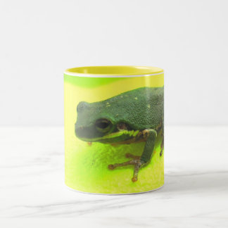 What would Froggie drink? Two-Tone Coffee Mug
