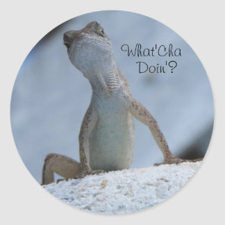What'Cha Doin? Sticker