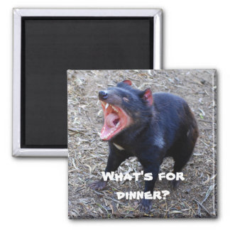 """What's for Dinner?"" Tasmanian Devil Magnet"