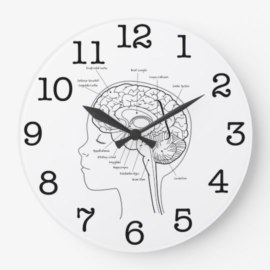 What's in Your Brain Clock