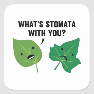 What's Stomata With You? Square Sticker