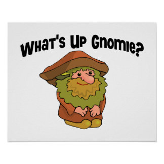 What's Up Gnomie Poster