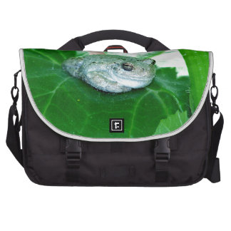What's Up, Tree Frog Commuter Bags