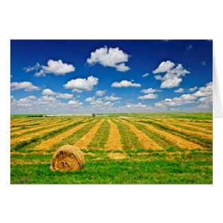 Wheat farm field at harvest card