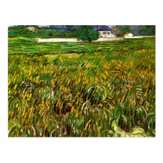 Wheat Field at Auvers by van Gogh Postcard