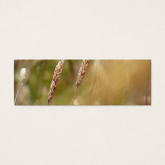 Wheat Field Blur Mini Business Card