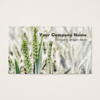 Wheat Field Custom Business Cards