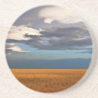 Wheat Field Fine Oil Painting Drink Coaster