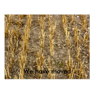 Wheat Field We have moved Postcard