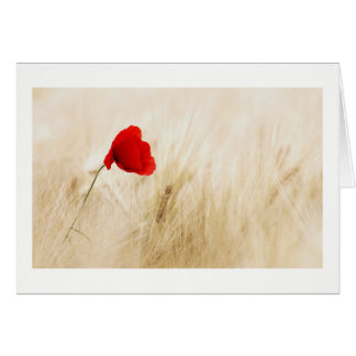 Wheat Field With Poppy Card