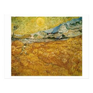 Wheat Fields Hospital Reaper Van Gogh Fine Art Postcard
