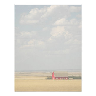 Wheat Fields Photo Letterhead