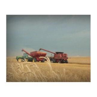 Wheat Harvest 2016 Wood Wall Art Wood Print