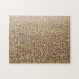 Wheat Jigsaw Puzzle