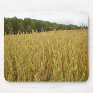 Wheat Plants Mouse Pad