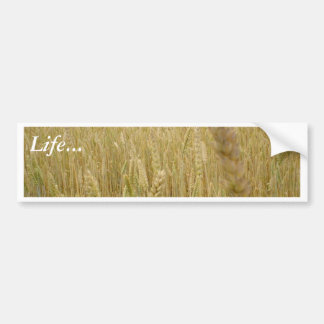 Wheat Seed Bumper Stickers