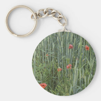 wheat stripes basic round button keychain