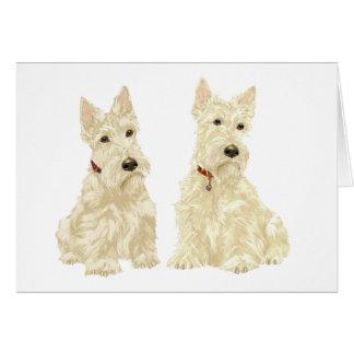 Wheaten Scottish Terriers Card