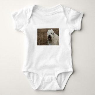 wheaten-terrier 2 baby bodysuit