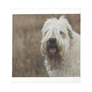 wheaten-terrier 2 notepad