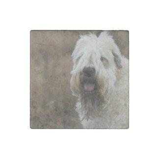 wheaten-terrier 2 stone magnets