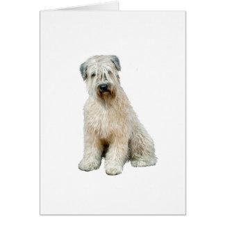 Wheaten Terrier (C) Card