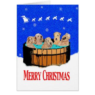 Wheaten Terrier Christmas in Northern California Card