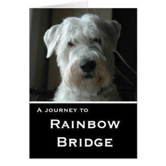 Wheaten Terrier sympathy card