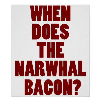 When Does the Narwhal Bacon Reddit Question Poster
