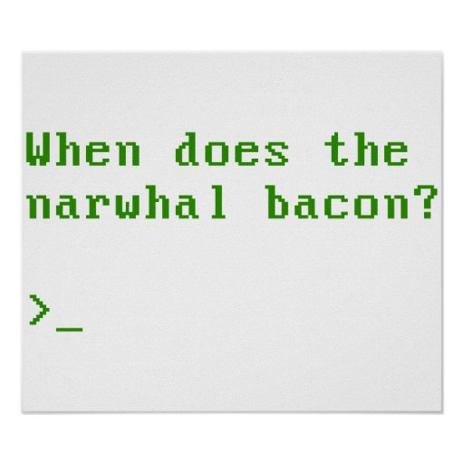 When Does the Narwhal Bacon VGA Reddit Question Print