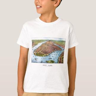 When New York was flat T-Shirt
