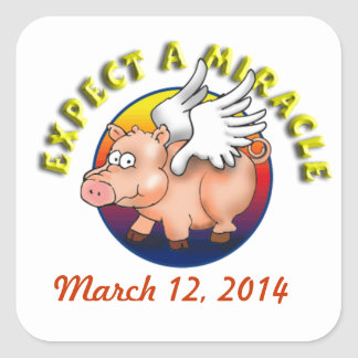 When Pigs Fly -- Expect a Miracle Square Sticker