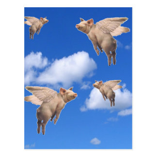 When Pigs Fly Post Cards