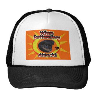 When Rottweiler Pups Attack :p  Human Hat