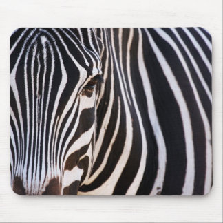 Where Is The Zebra? Mouse Pad