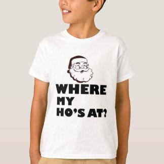 where my Ho's at T-Shirt