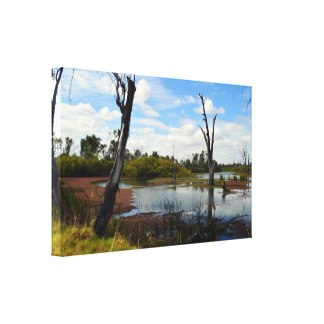Where The Wildlife Play Riverland Australia, Canvas Print