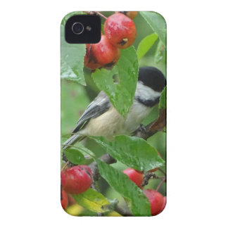 Where's Chickadee? iPhone 4 Covers