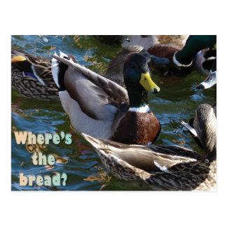 Where's the Bread? Postcard